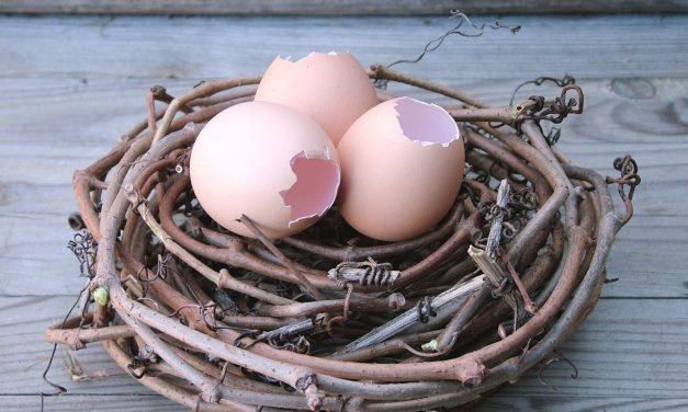 Húsvéti fészek ötletek kellékei: itt találod a legjobb 10-et