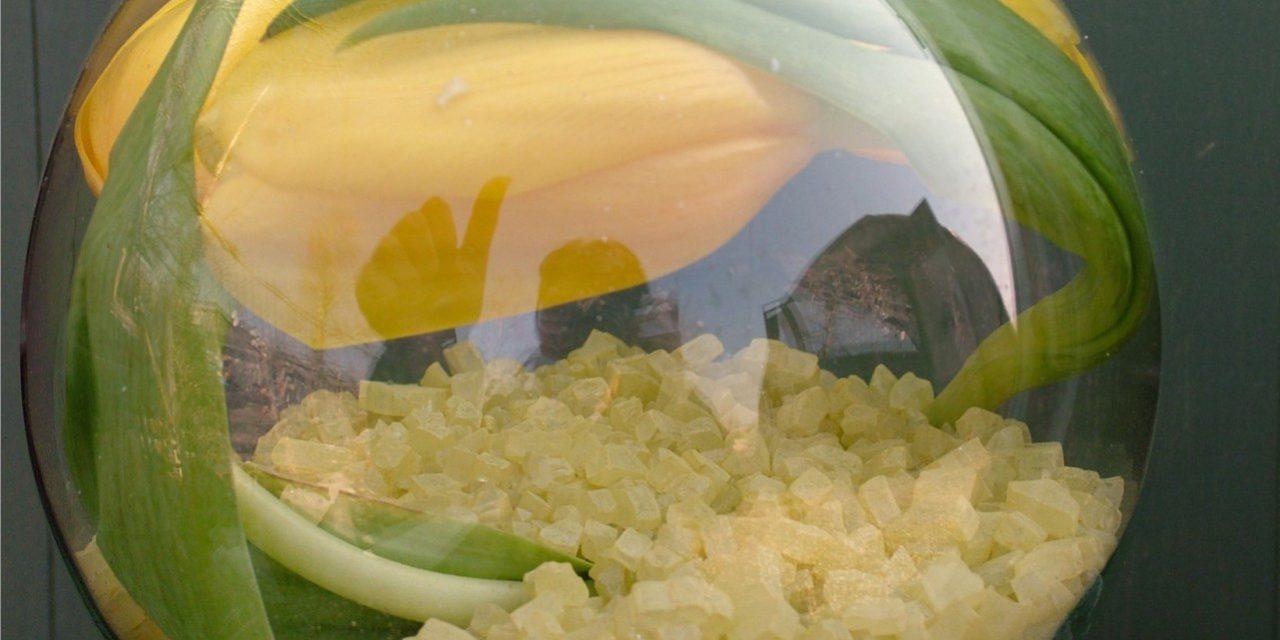 Hogyan készül üveggömbbe az ötletes húsvéti dekoráció?