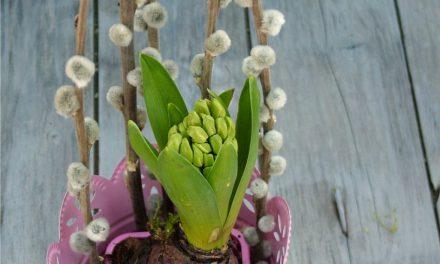 Ezt a bájos tavaszi dekorációt készítsd el házilag!