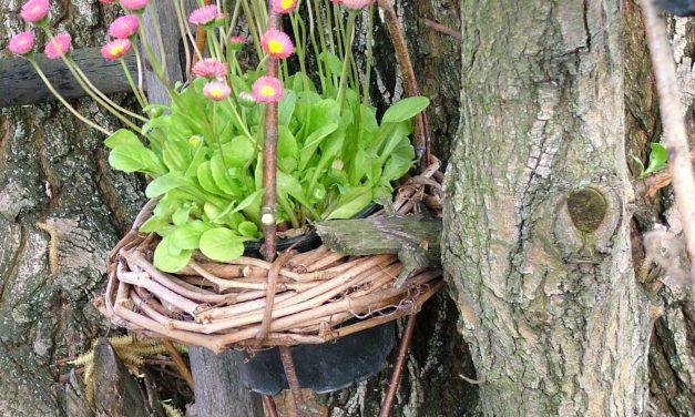Te is a természetes anyagból készült virágtartó dekoráció híve vagy?
