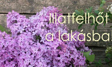 Álomszép asztali virágdíszek: orgonavirággal gyerekjáték a készítése