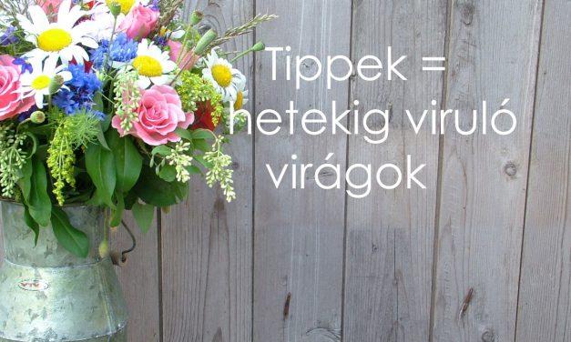 Így virulnak 2 hétig az élő virágból készült asztaldíszek