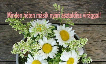 Hogyan készülnek változatosan a nyári asztali virágdíszek?