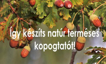 10 terméses őszi ajtódísz készítése – natúr kedvelőknek
