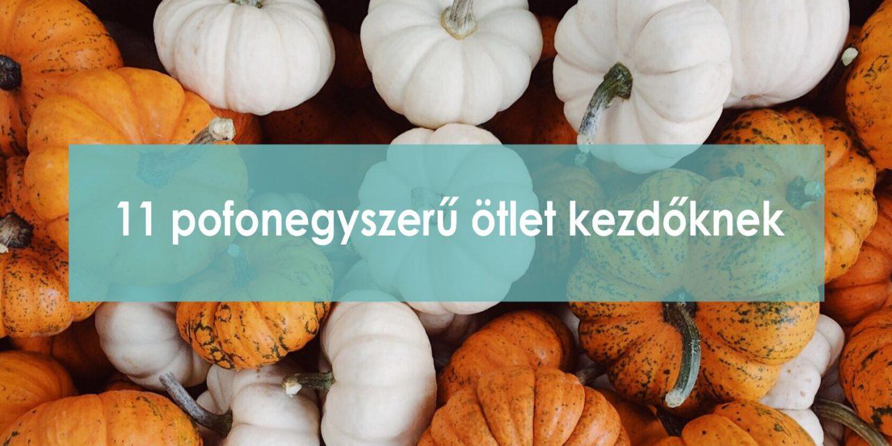 11 mutatós őszi dekoráció készítése kezdőknek